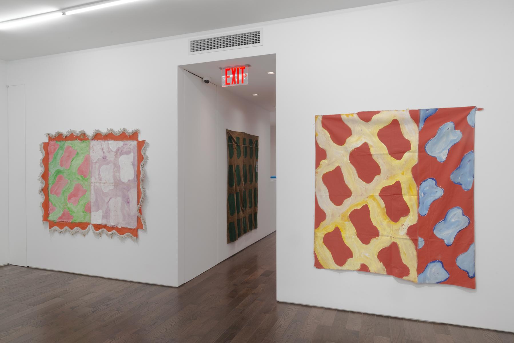 5_Claude Viallat Major 2017 New York 1055
